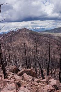 Blodgett Peak fire damage