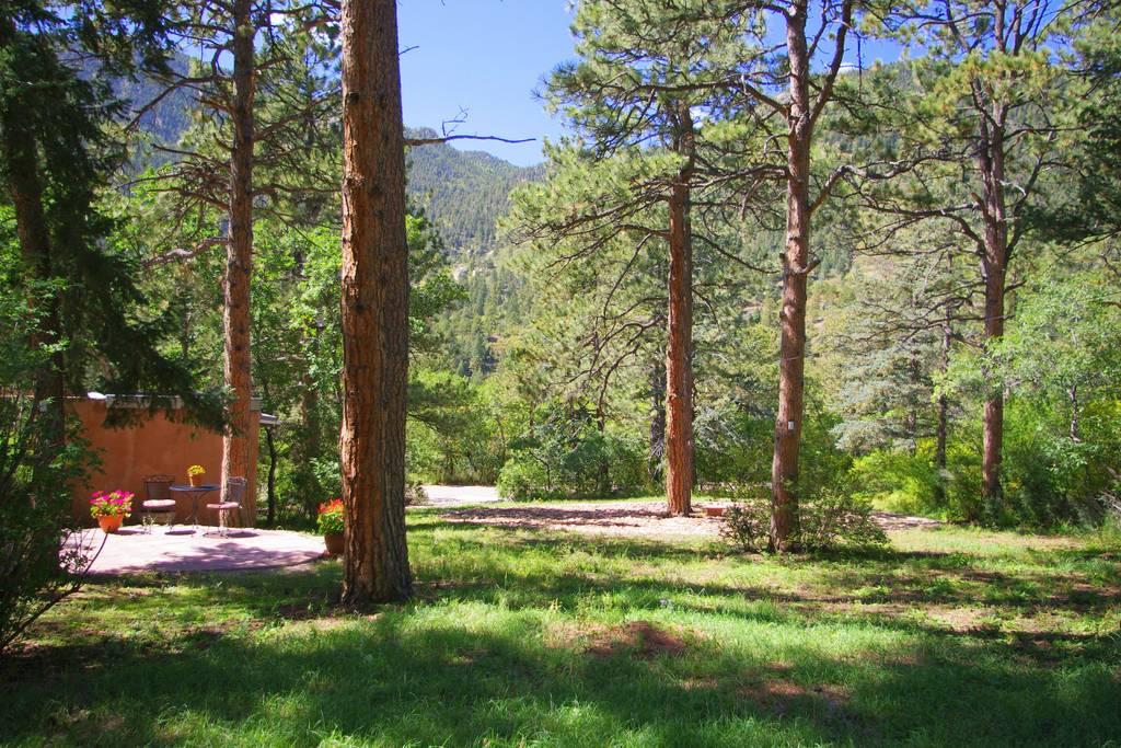 Peaceful Airbnb near Colorado Springs