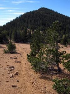Mount Rosa Colorado Springs