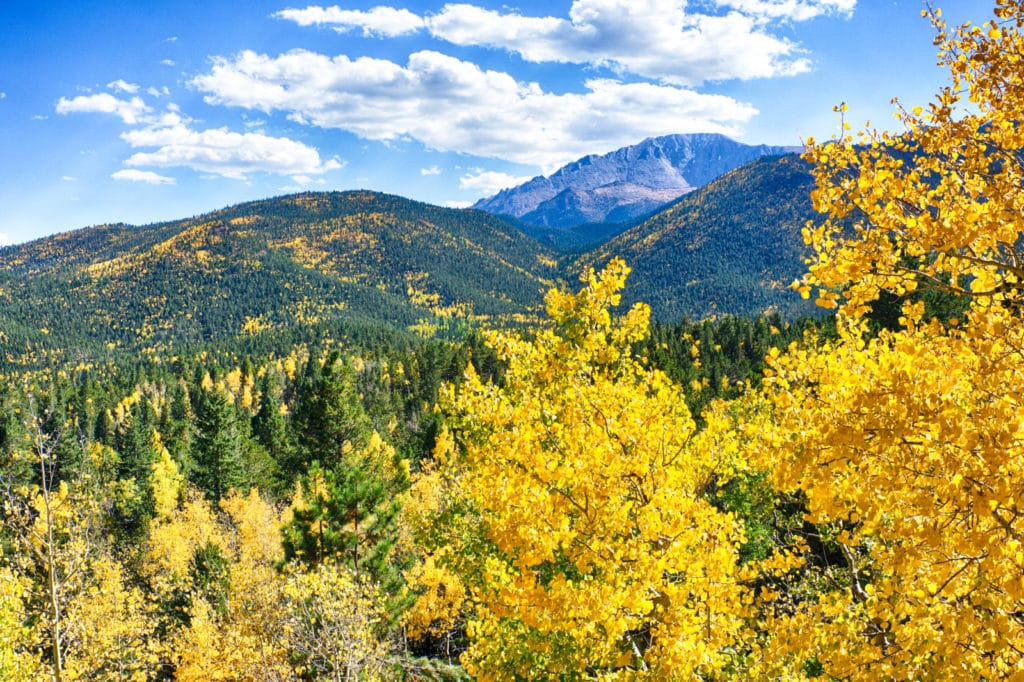 Pikes Peak Fall colors are a sight to behold